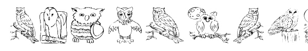 Fonte AEZ Owls for Traci